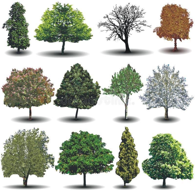 Árvores diferentes do vetor ilustração do vetor