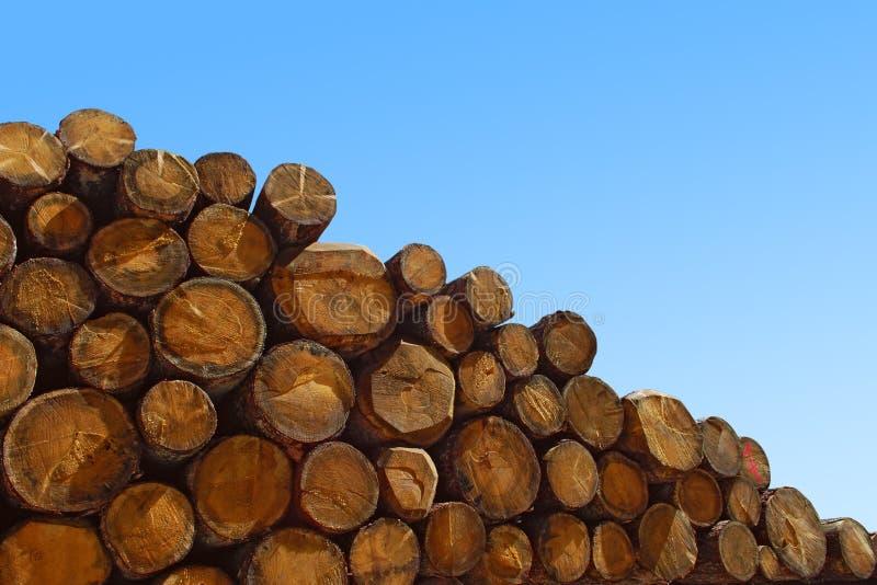 Árvores do Felling imagem de stock royalty free
