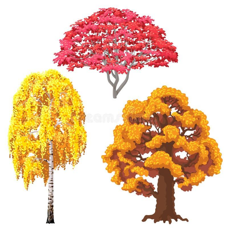 Árvores do outono ajustadas ilustração royalty free