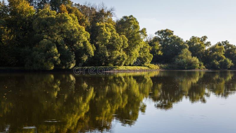 Árvores do outono na reflexão fotografia de stock royalty free