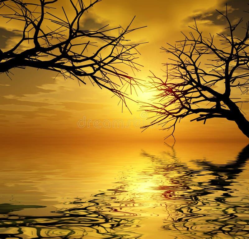 Árvores do por do sol ilustração royalty free