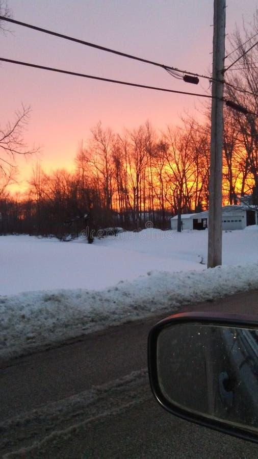 Árvores do por do sol do inverno fotos de stock royalty free