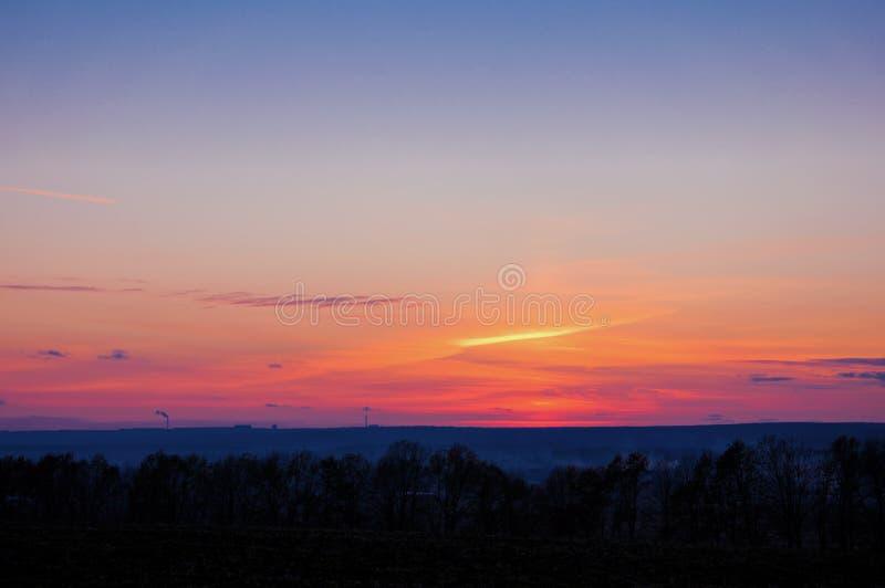 Árvores do sol da skyline do por do sol do outono imagens de stock