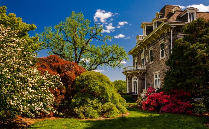 Árvores e arbustos coloridos atrás da mansão no arboreto de Cylburn imagens de stock