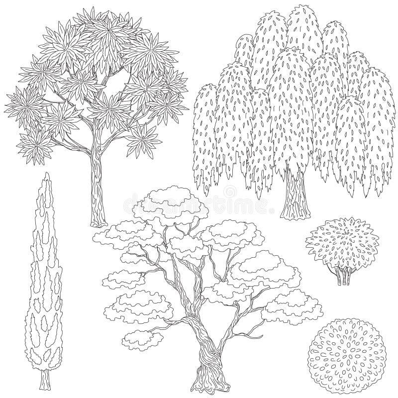 Árvores e arbustos preto e branco dos esboços ilustração do vetor
