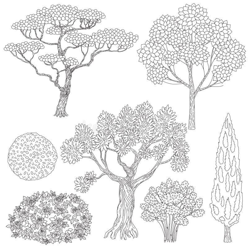 Árvores e arbustos preto e branco dos esboços ilustração stock