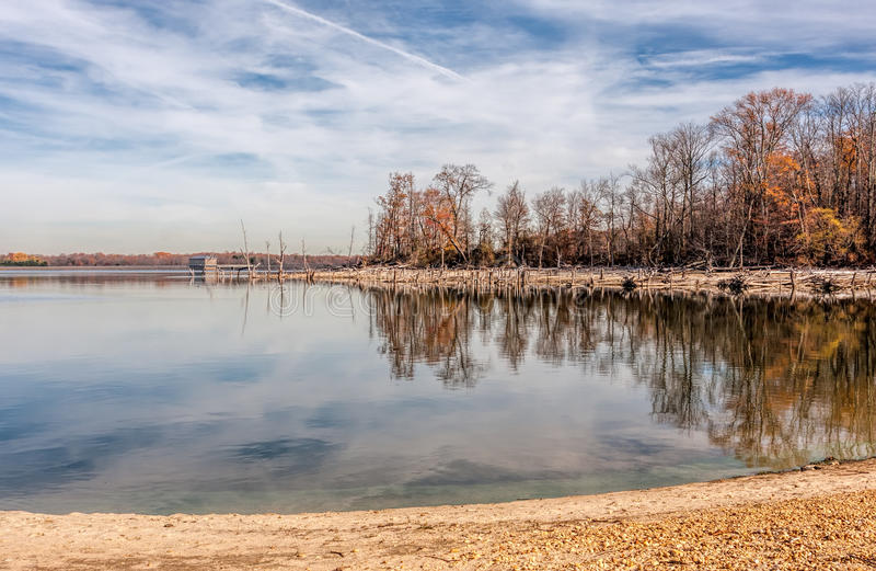 Árvores e lago inoperantes fotos de stock