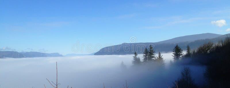 Árvores e montanha que repicam através da névoa em Portland, Oregon fotografia de stock