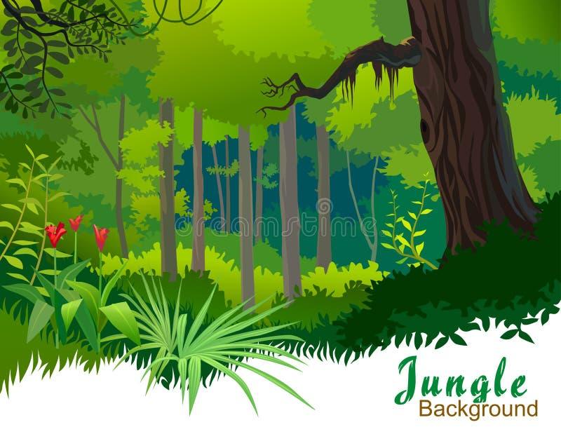 Árvores e região selvagem da selva de Amazon ilustração stock