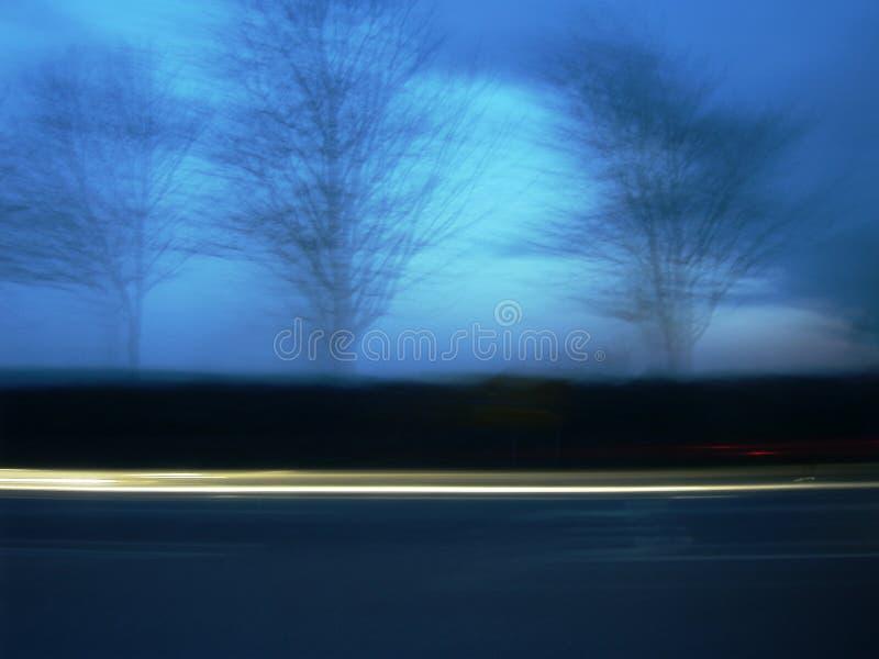 Árvores espectrais foto de stock