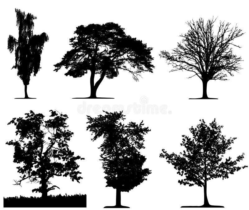 Árvores isoladas ilustração royalty free