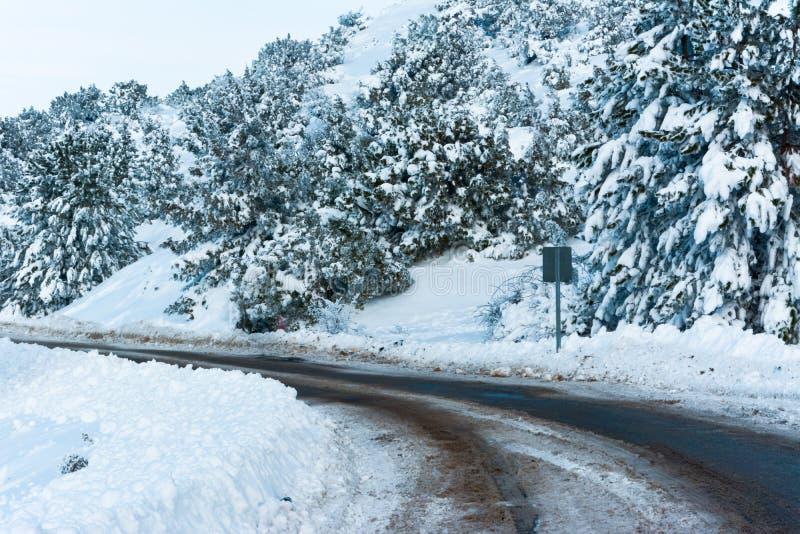 Árvores nevado e estrada gelada imagens de stock royalty free