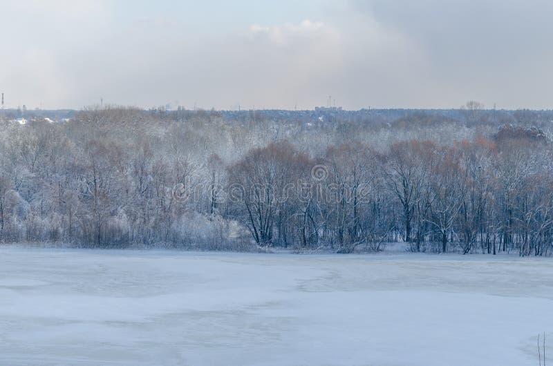 Árvores no banco oposto do gelo-limite do rio imagem de stock royalty free