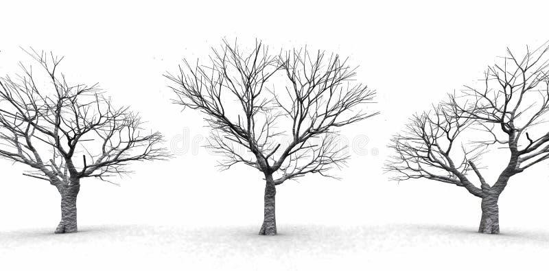 Árvores no embaçamento enevoado ilustração do vetor