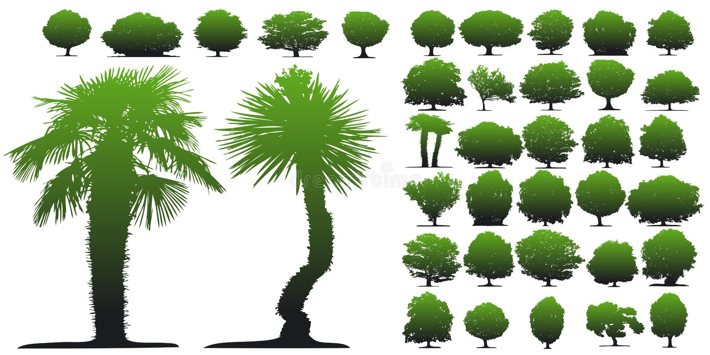 Árvores no fundo branco ilustração do vetor