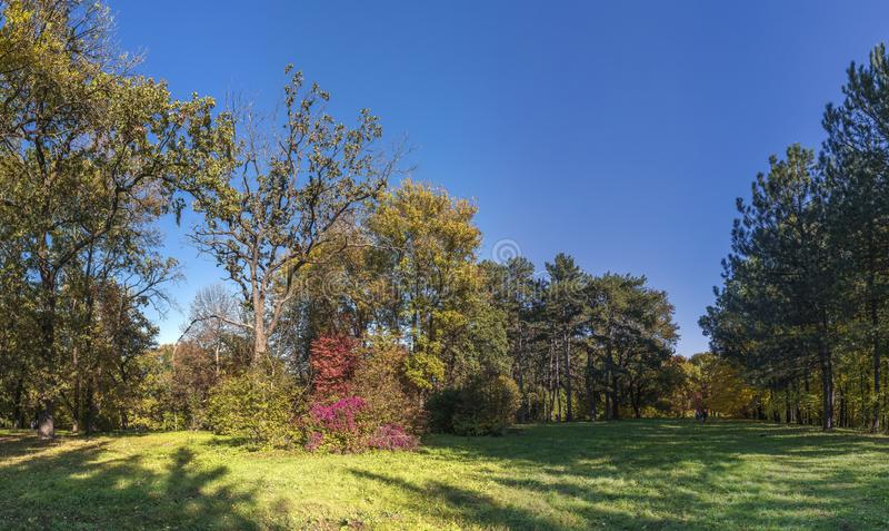Árvores no parque de Sofiyivka em Uman, Ucrânia foto de stock royalty free
