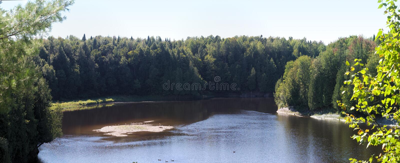 Árvores panorâmicos calmas da paisagem do rio em um dia ensolarado fotografia de stock royalty free