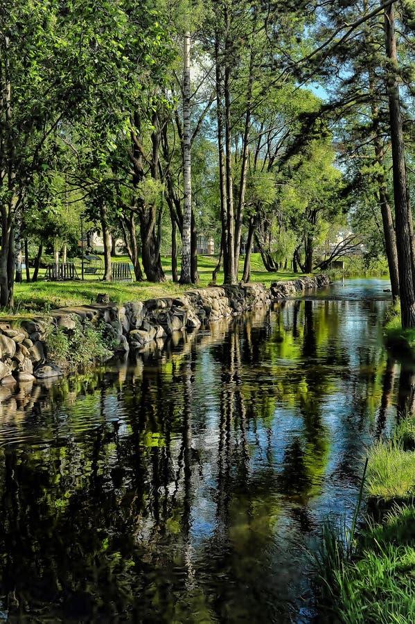 Árvores perto da lagoa foto de stock