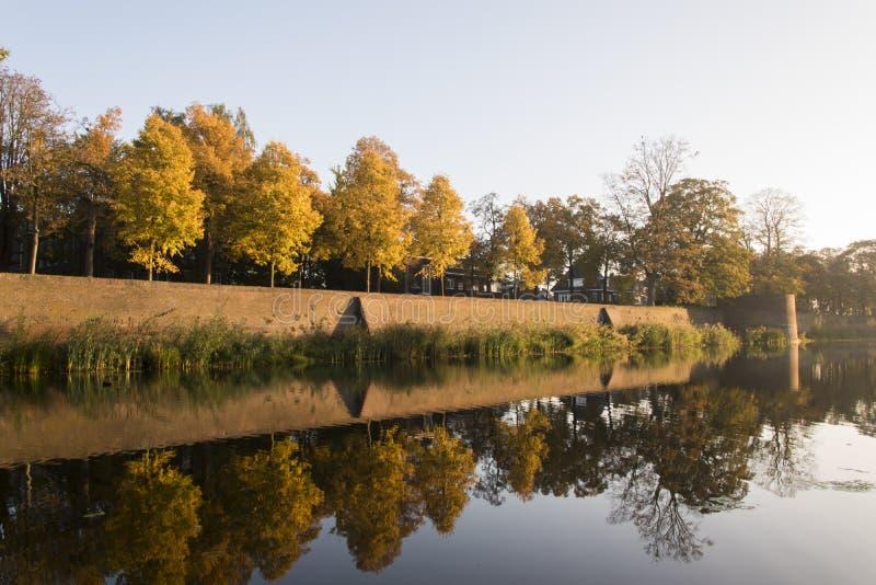 Árvores que refletem na água imagem de stock