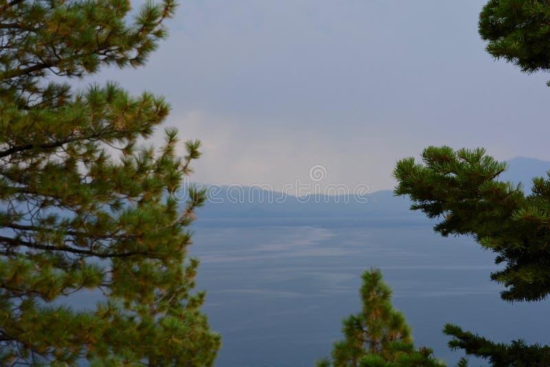 Árvores sempre-verdes no primeiro plano do lago e das montanhas fotos de stock