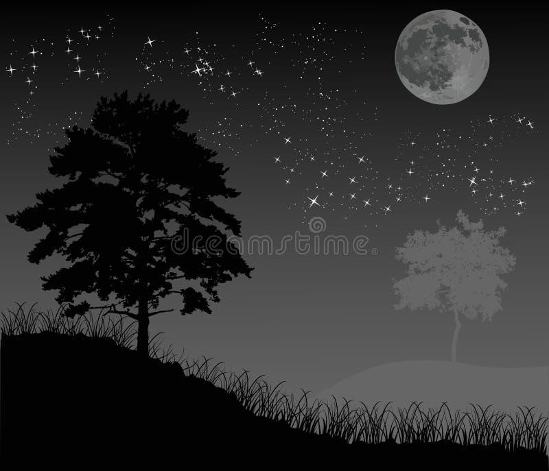 Árvores sob o céu nocturno com lua ilustração royalty free