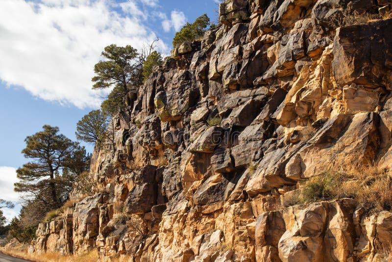 Árvores sobre um penhasco da rocha fotografia de stock