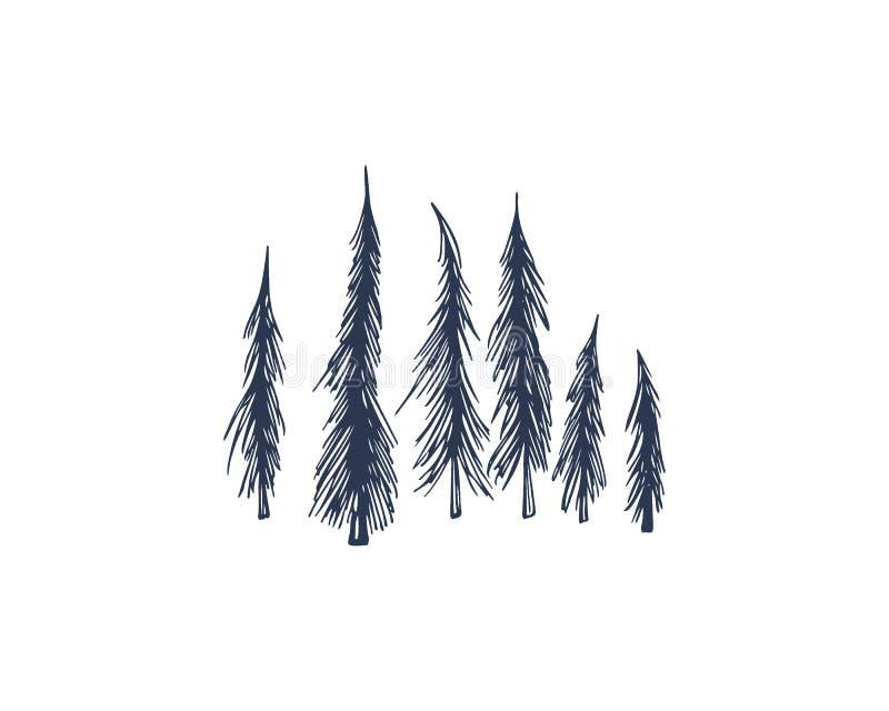 Árvores spruce tiradas mão ilustração do vetor