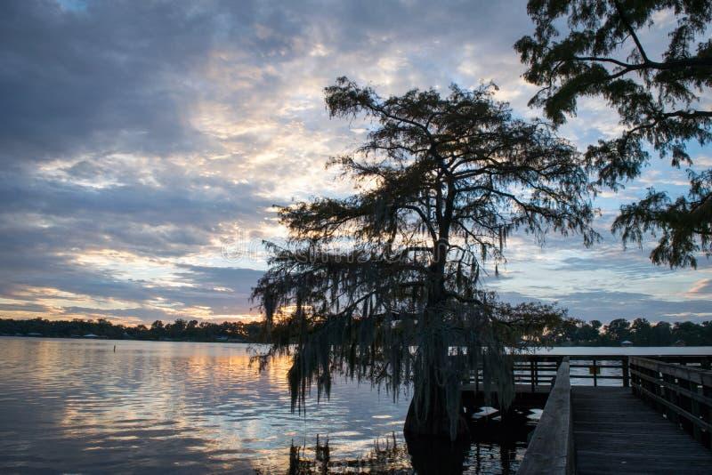 Árvores velhas e céu bonito no por do sol no Bruin do lago em St Joseph Louisiana imagem de stock royalty free
