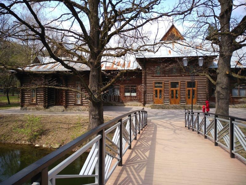 ?rvores verdes e c?u azul no parque da cidade Ivano-Frankivsk, Ucr?nia Mola adiantada fotos de stock