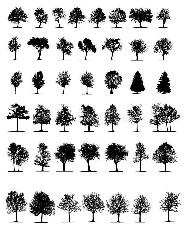 Árvores (vetor) ilustração stock