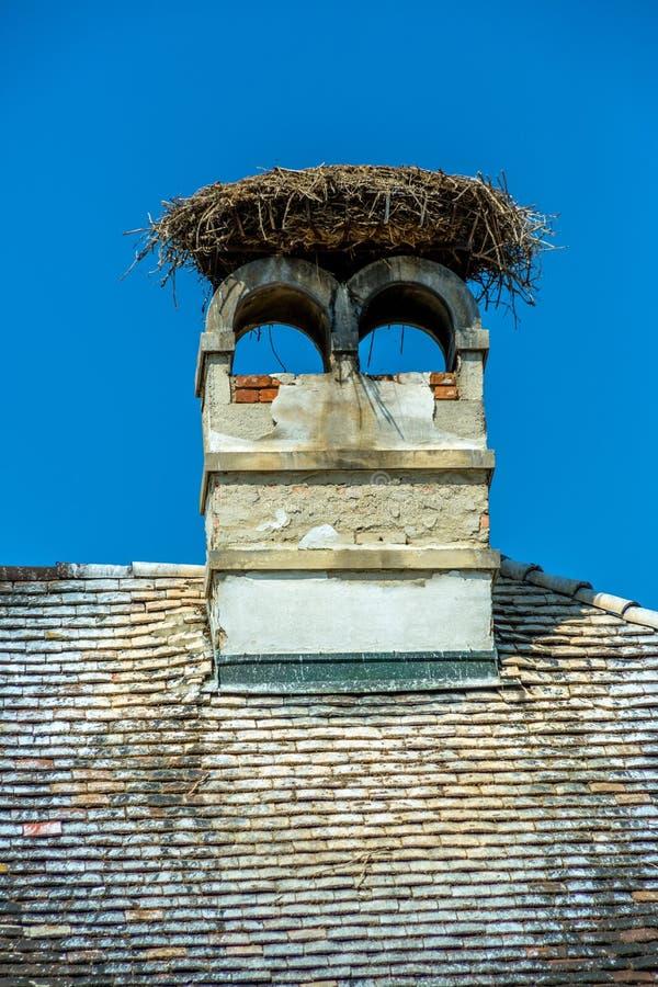Áustria, ninho da oxidação de uma cegonha fotos de stock royalty free