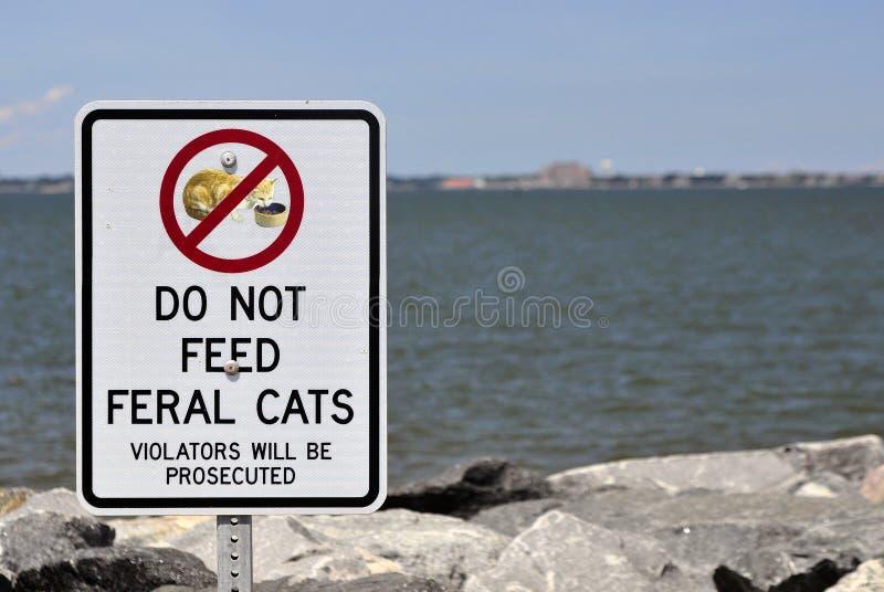 'No Feeding'野生猫标志 库存照片