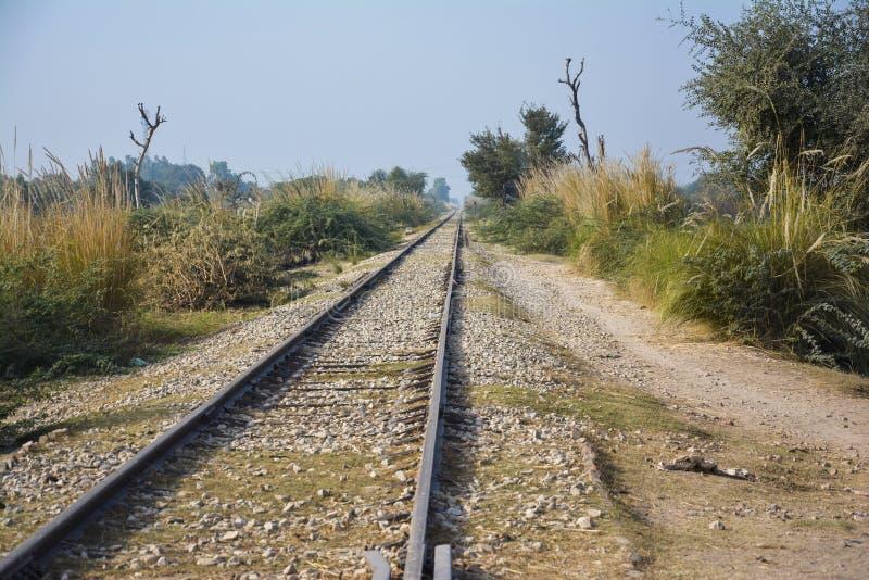 €˜railroad' longo e velho da trilha do trem fotos de stock