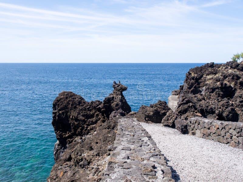 'Vaggar den vulkaniska hunden 'bildande på Pico Island, Azores, Portugal fotografering för bildbyråer