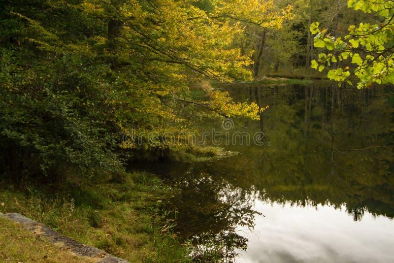 """€ """"Ridge Parkway azul, Virginia de las reflexiones del lago otter fotos de archivo"""