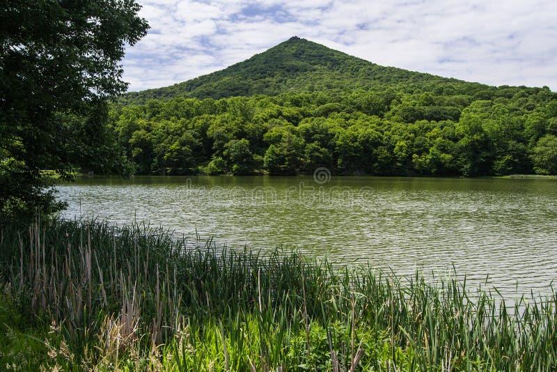 € supérieur pointu «Ridge Parkway bleu, VA, Etats-Unis de montagne image stock