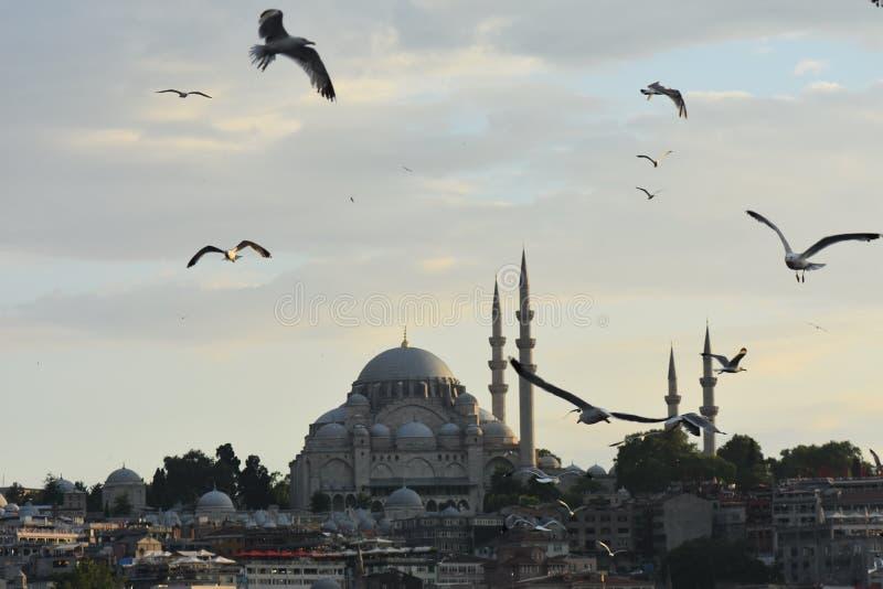Ä°stanbul Bosphorus stockbild