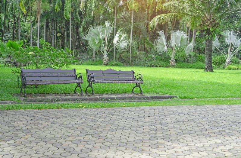 两在新绿色冻结的草地围场,在灰色具体块路面走道旁边的光滑的草坪的长木凳 免版税库存图片