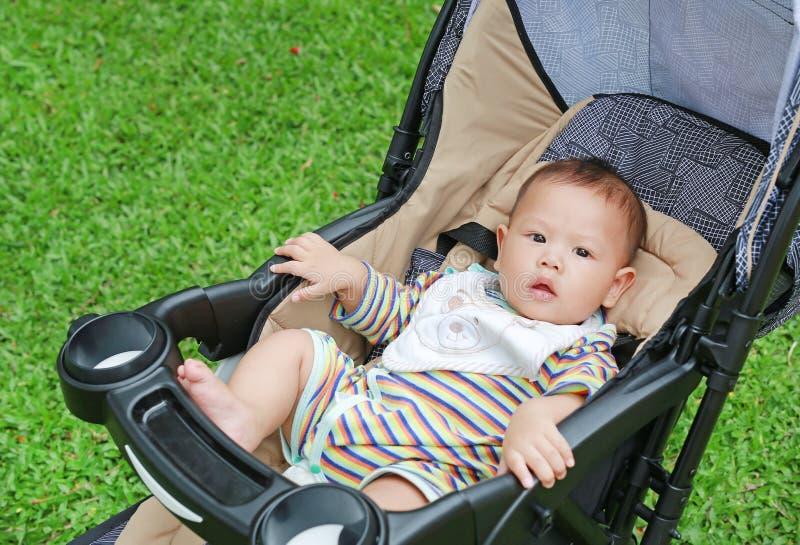 6个月坐在婴儿推车的小亚裔男婴在绿色庭院 库存图片