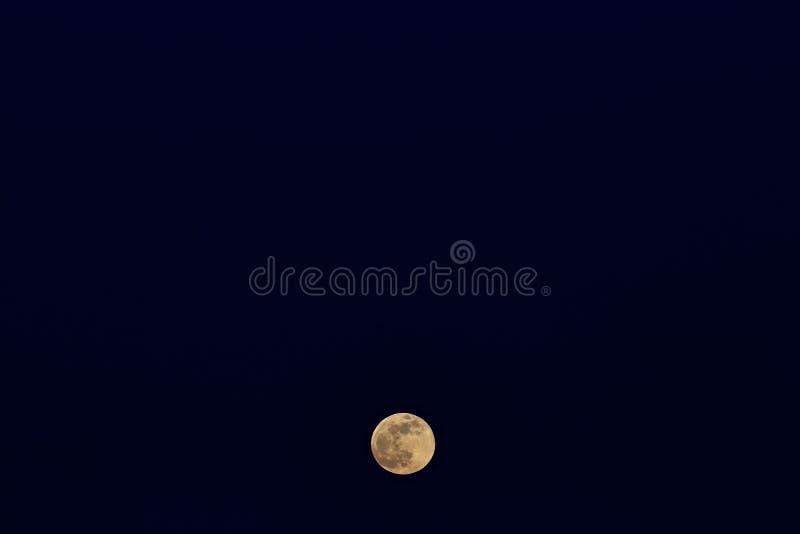 上升满月 在暮色天空的日落时间 免版税库存图片