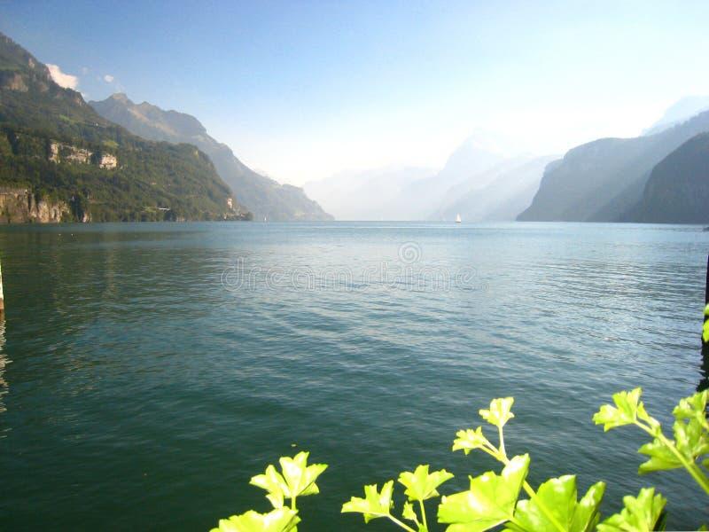 与一个土耳其玉色瑞士湖的美丽全景视图有积雪的山和花的 免版税库存照片