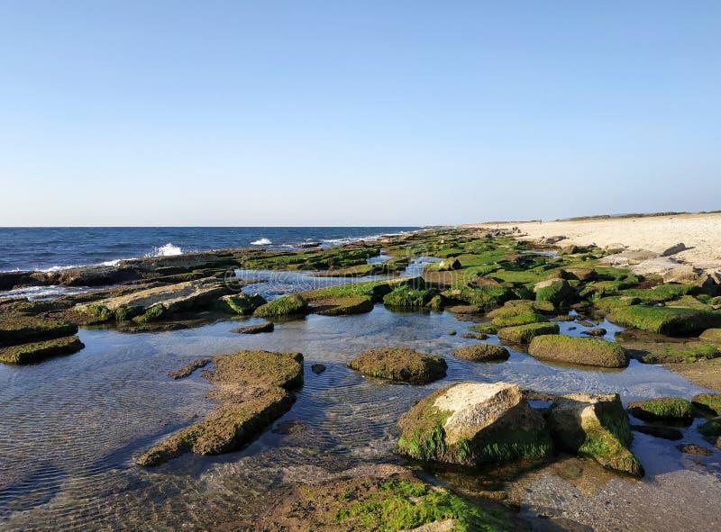 与岩石的Bustan HaGalil沙滩在英亩海法以色列附近 Akko海滨陆间海 清楚的水石头 免版税库存照片