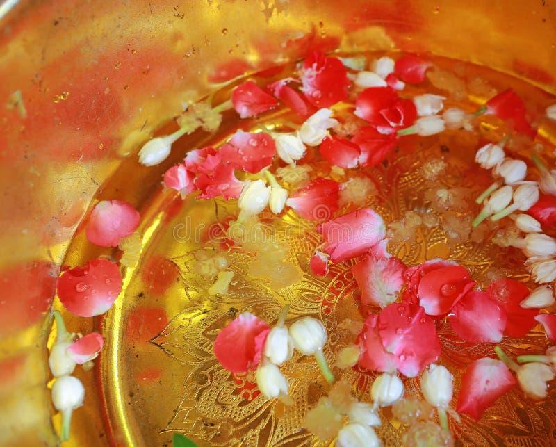 与在一个金黄碗的香水混合的和花瓣圣水由佛教优点的修士泰语 对保佑或圣水 免版税库存照片