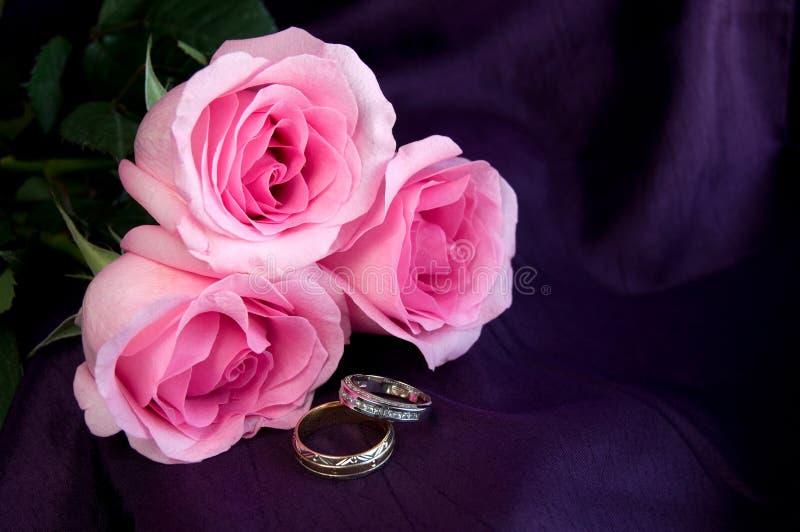 与桃红色玫瑰的美好的定婚戒指在紫色背景 免版税库存图片