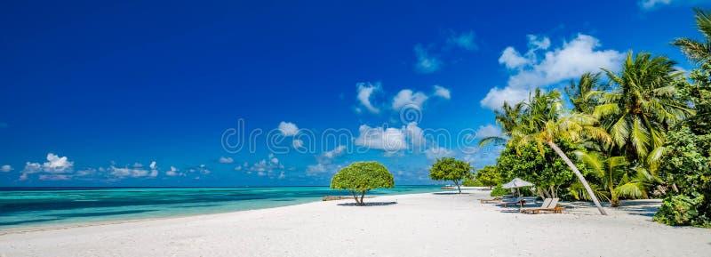 与棕榈树和喜怒无常的天空的美丽的海滩 暑假旅行假日背景概念 免版税库存照片