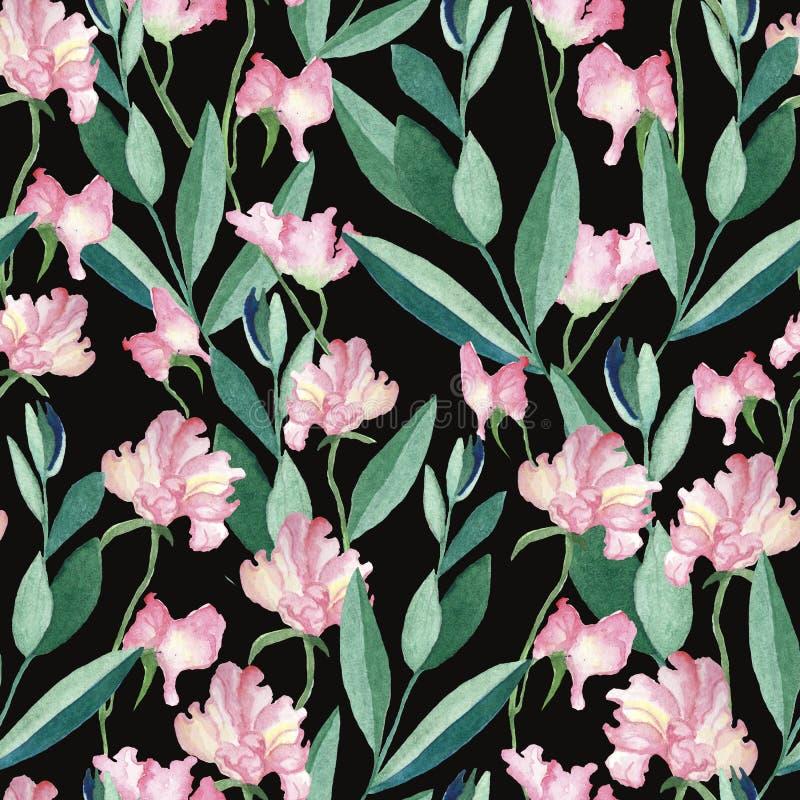 与水彩花和叶子的无缝的样式 皇族释放例证