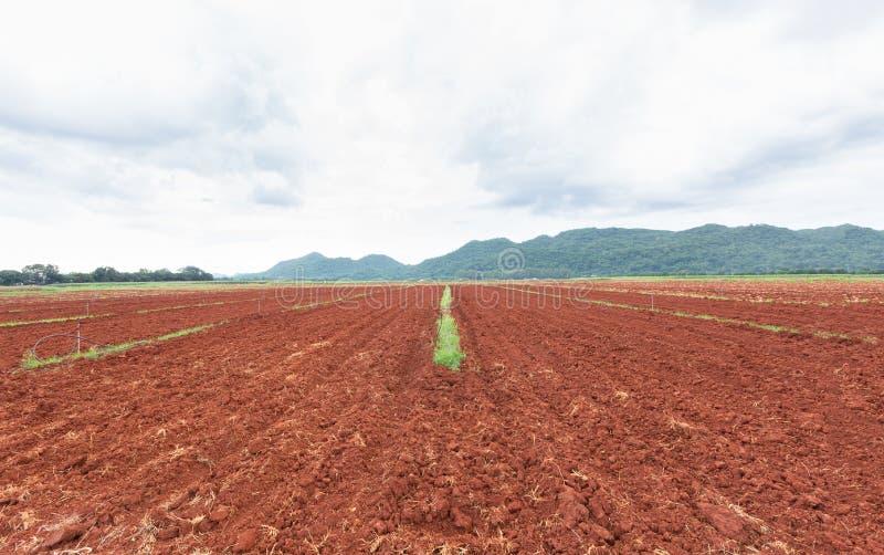 与水灌溉系统的农业领域,为种植甜玉米种子准备的被犁的领域在泰国 免版税库存照片