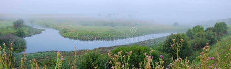 与河弯和草甸的有雾的夏天风景 库存照片