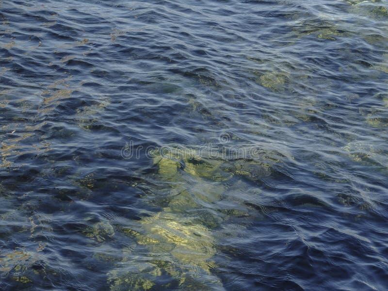 与波浪的深蓝透明海水 在Sevastopo附近海岸的纯净的黑海  免版税图库摄影