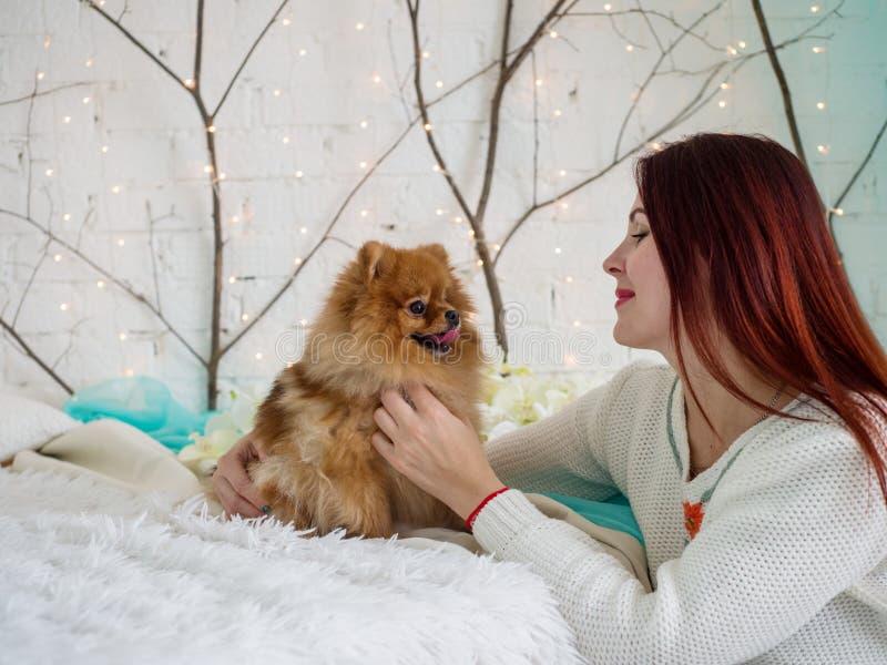 与户内一条小的红色狗一起的美女 免版税库存图片
